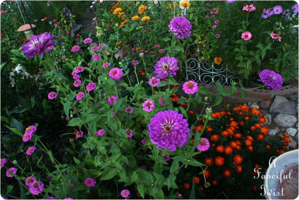 In the garden 14