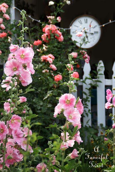 In the garden 10