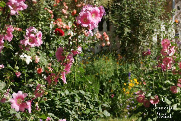 In the garden 11