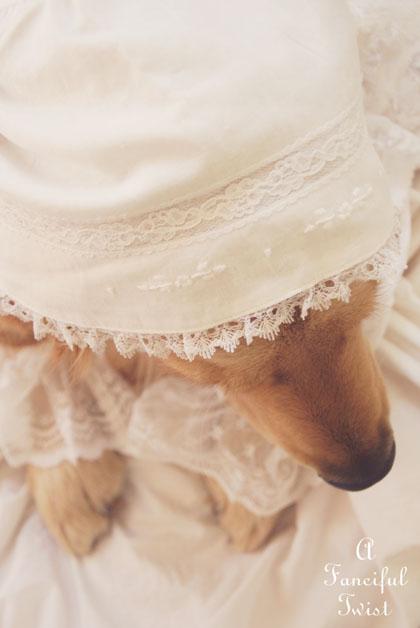 Nanny buttoncap 1