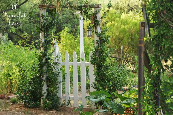 Summer garden 5