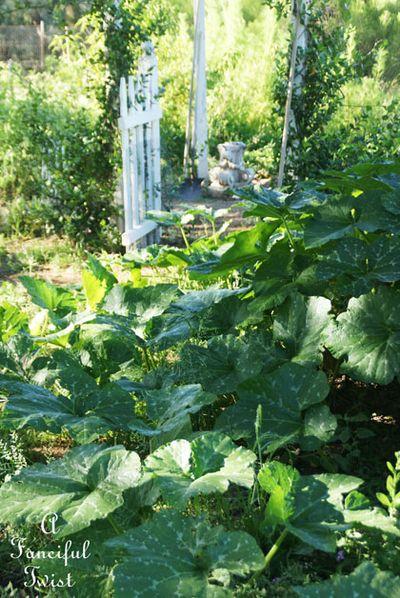 September garden 22
