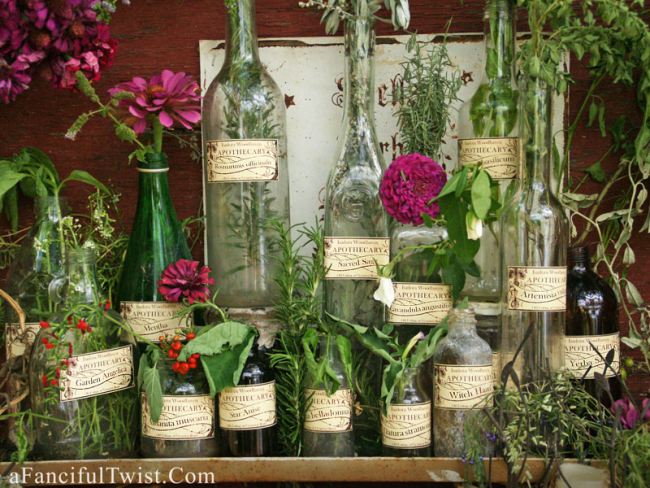 Isadora Woodhaven Apothecary {Spells, Herbs & Potions, Oh My!}
