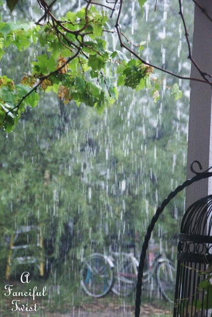 Rainy day 6