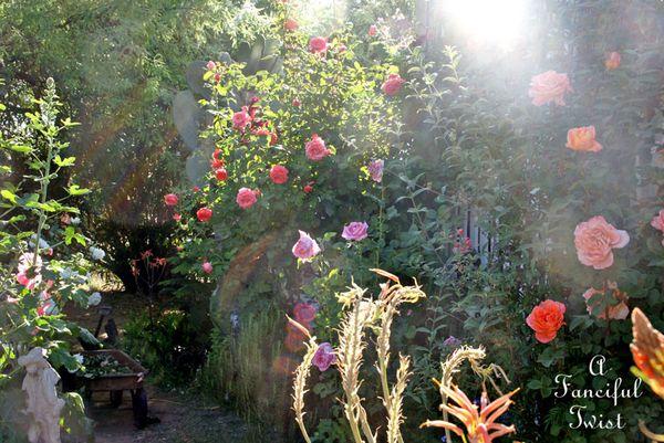 Secret garden 24