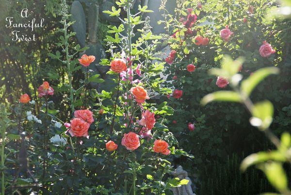 Secret garden 4