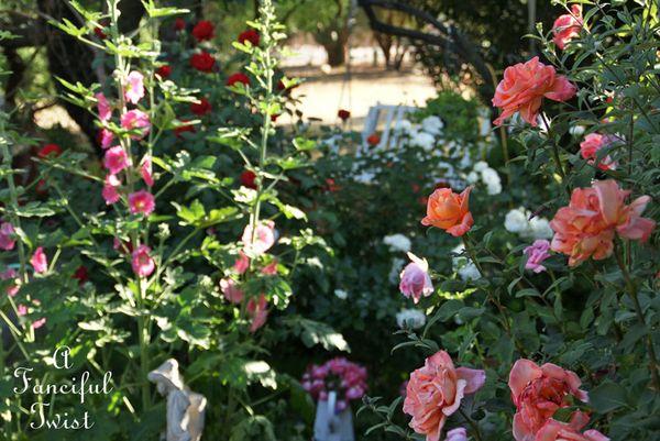 Secret garden 17
