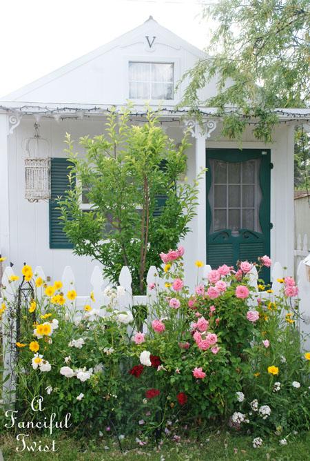 Cottage garden 4