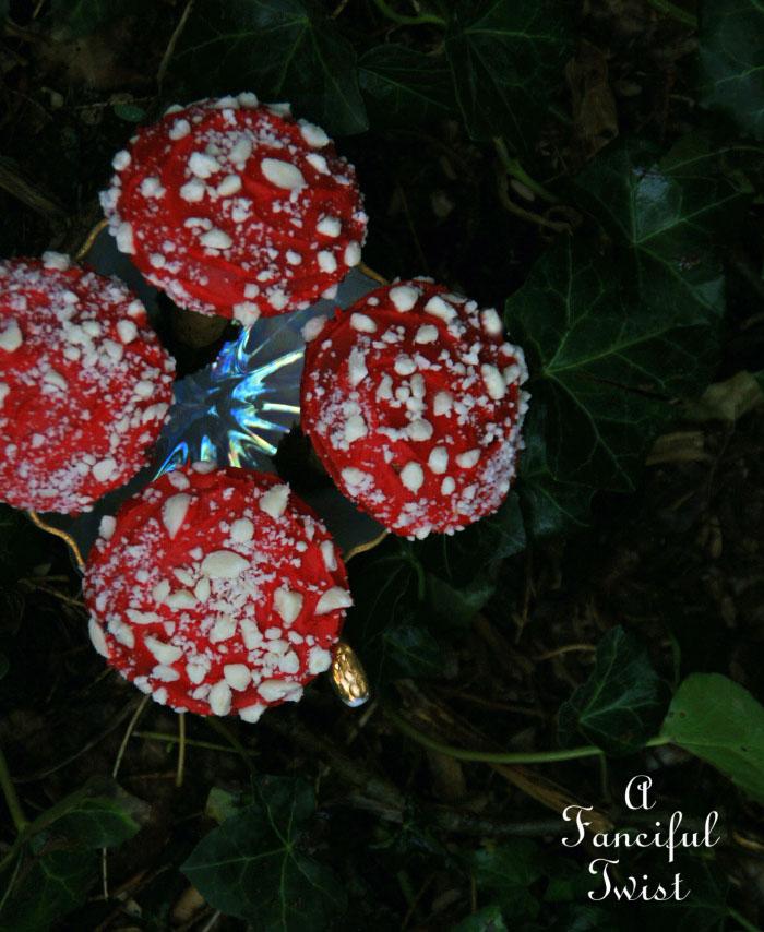 Cookie mushrooms 1