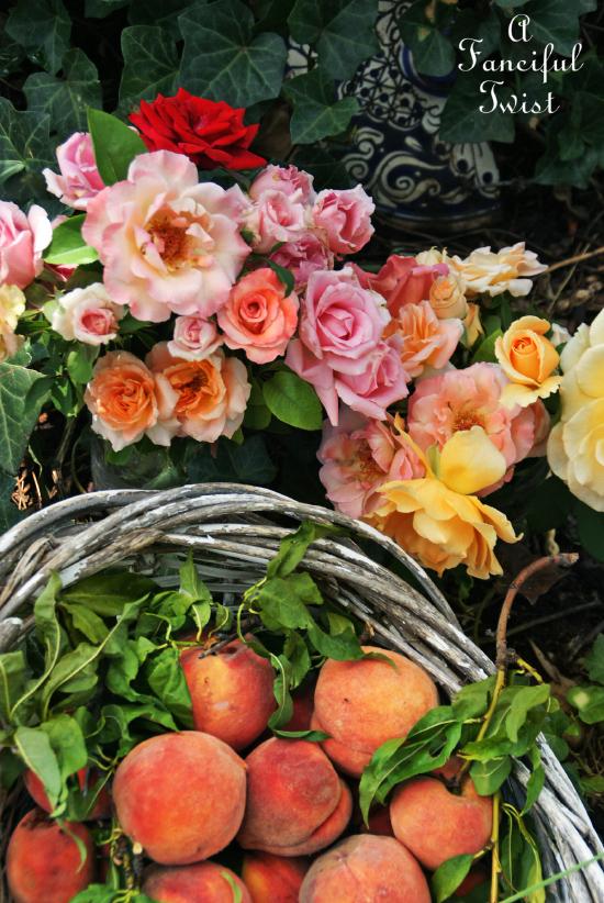 Peach season 10
