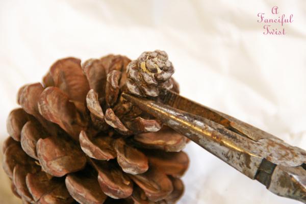 Pine cone craft 1a