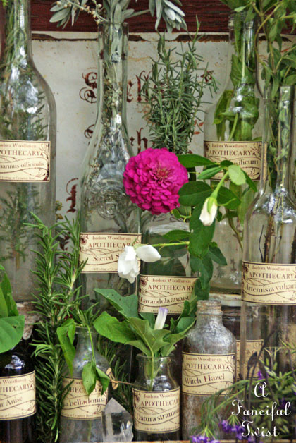 Apothecary spell potion labels 23