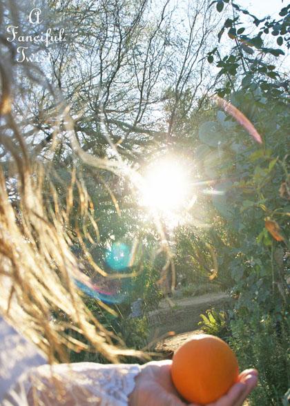 Winter garden light 14