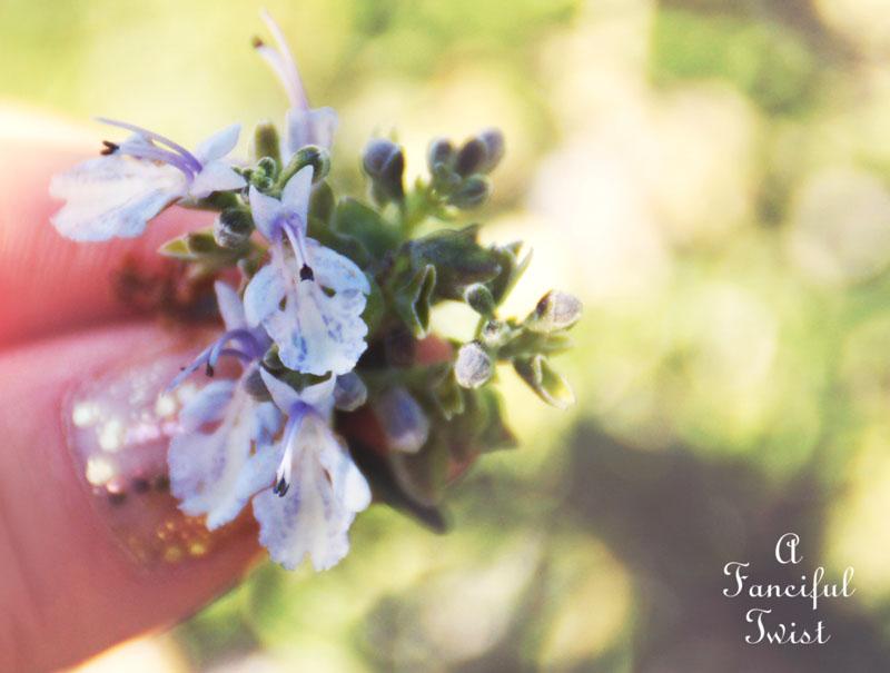 Spring things 8