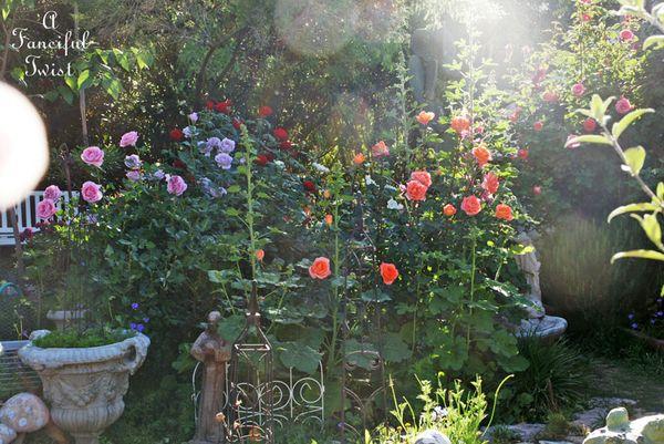 Secret garden 11