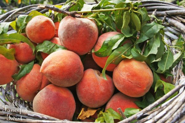Peach season 9