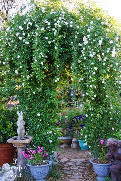 Garden magic 2