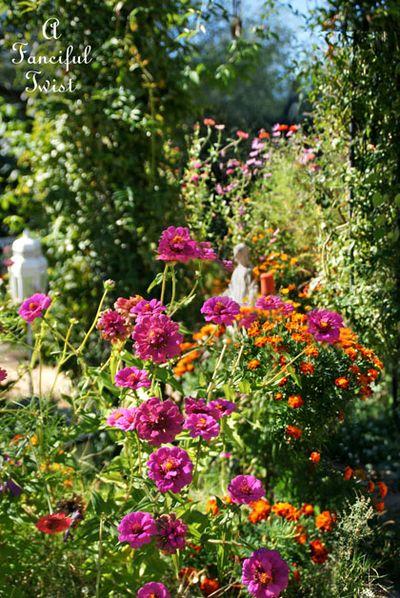 November garden 1