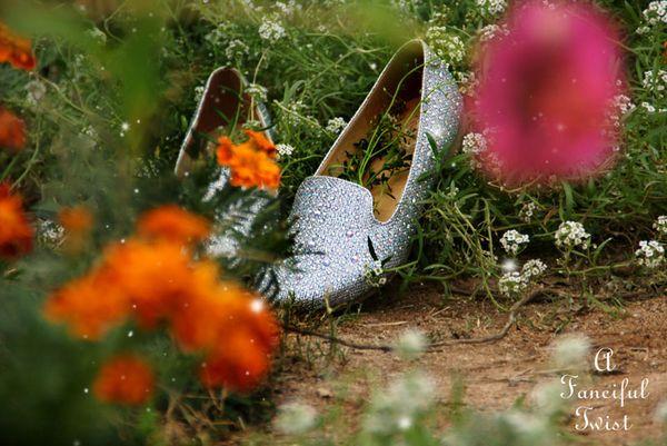 Magic shoes 1