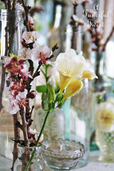 Blossoms 24