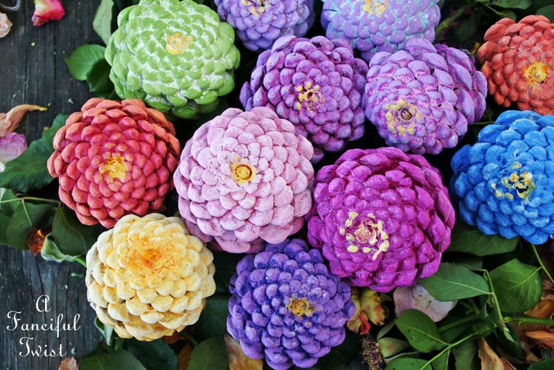 Pinecone flowers 9