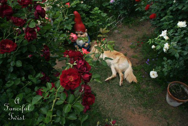 Secret garden 41