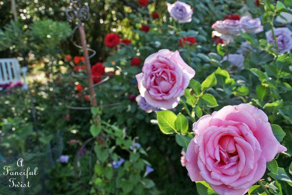 Secret garden 13