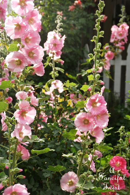 Paper flowers 17