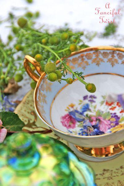 Tea garden 14
