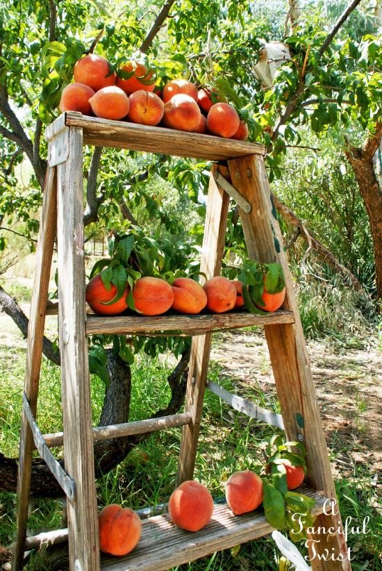 Peach season 2