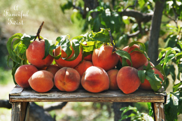 Peach season 5
