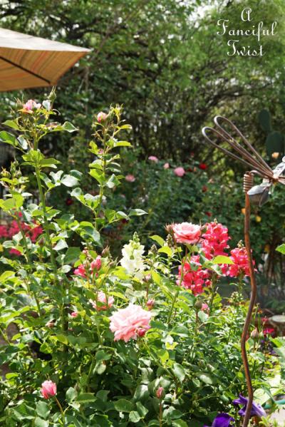 Garden magic 21