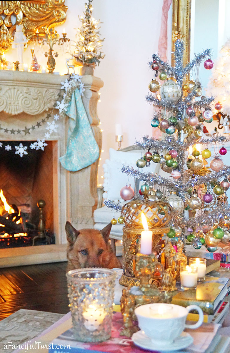 Chistmas house 34