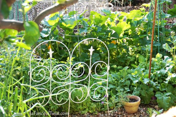Home garden 14