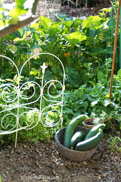 Home garden 27