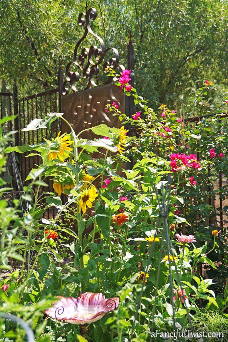 Sunflower summer 10