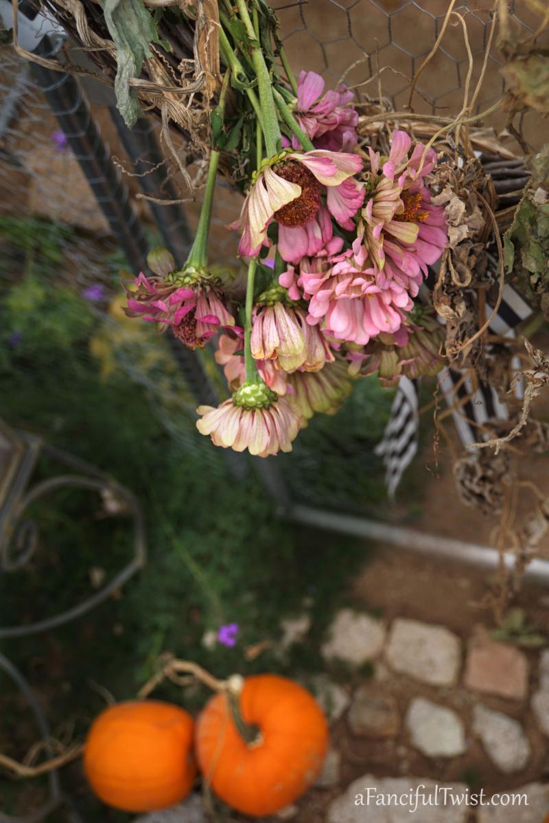 Hope garden 5