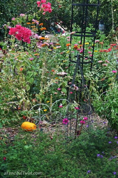 Hope garden 4