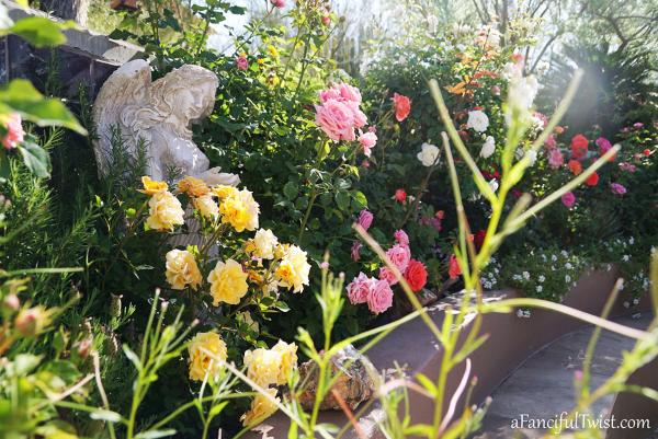 Garden love 10
