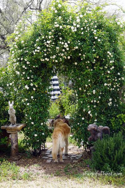Garden love 2