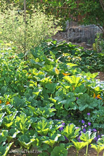 Home garden 15