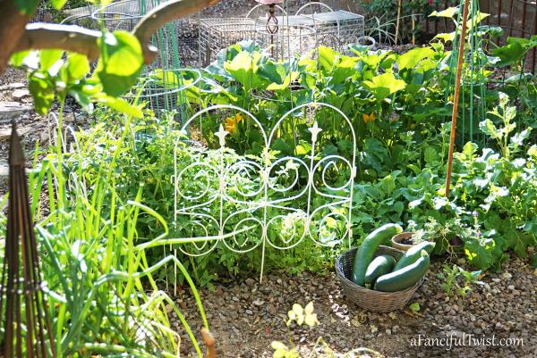 Home garden 28