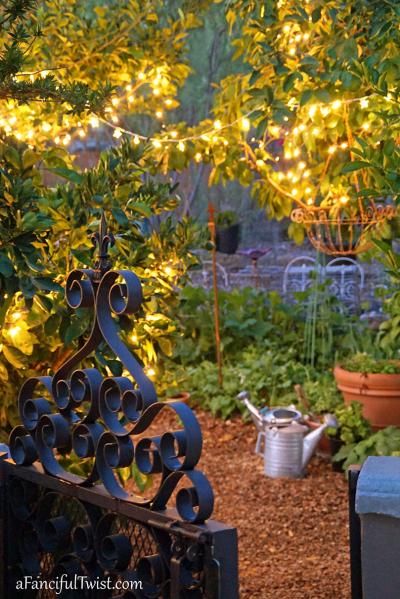 Home garden 7
