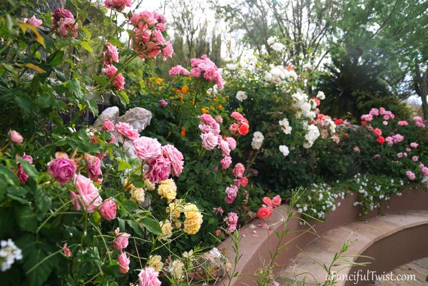 Garden love 15