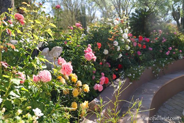 Garden love 11