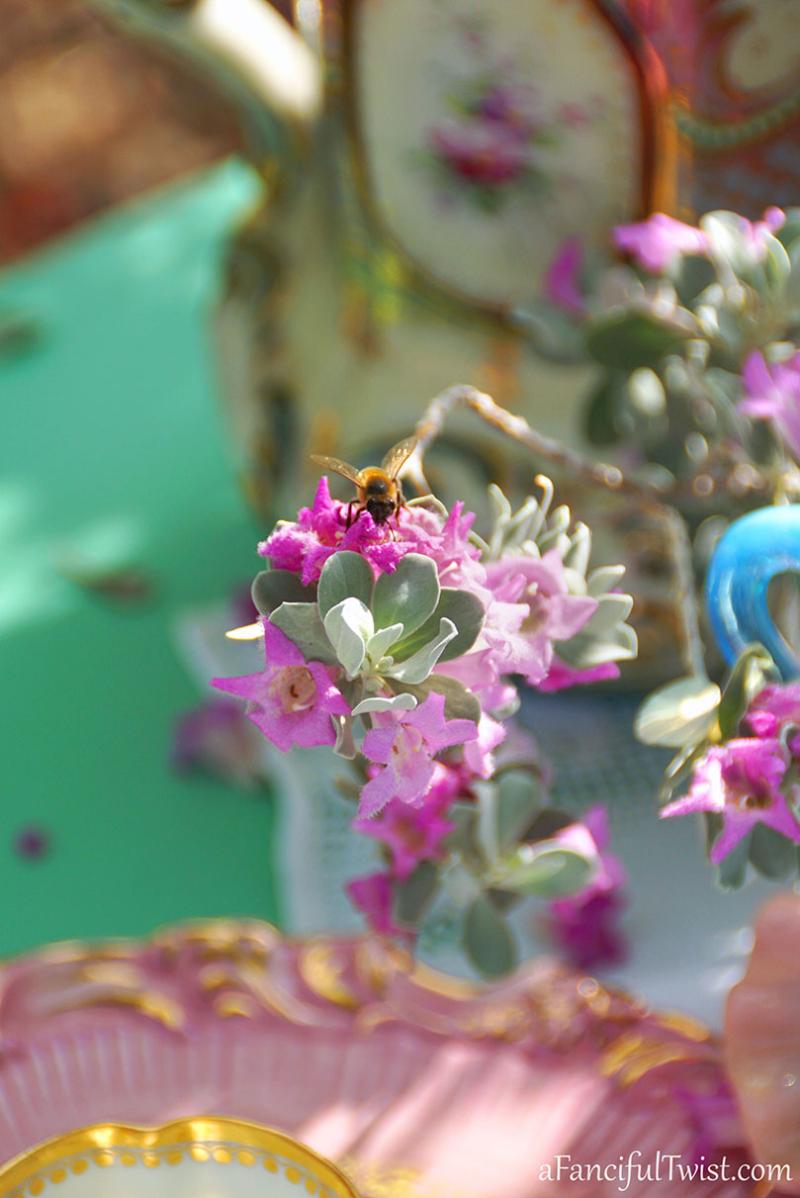 Tea in the garden 7