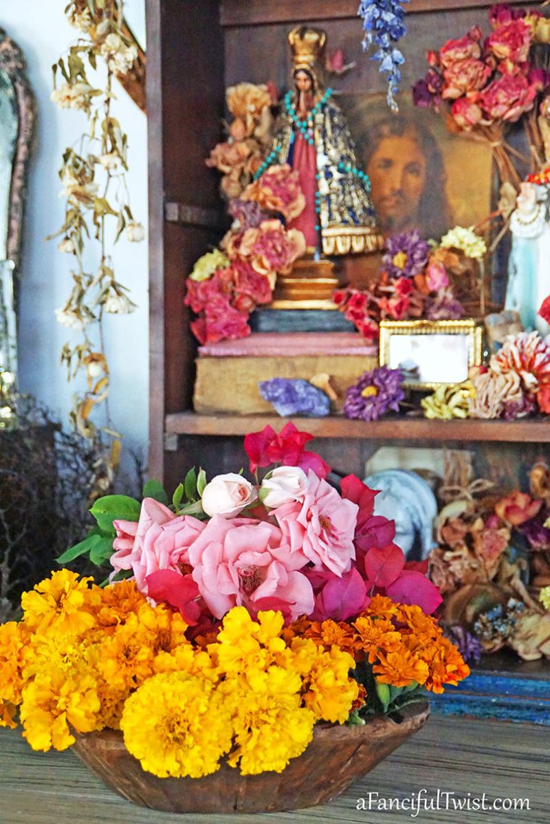 Floriferous november 6