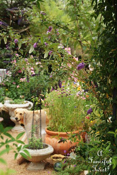Miles garden