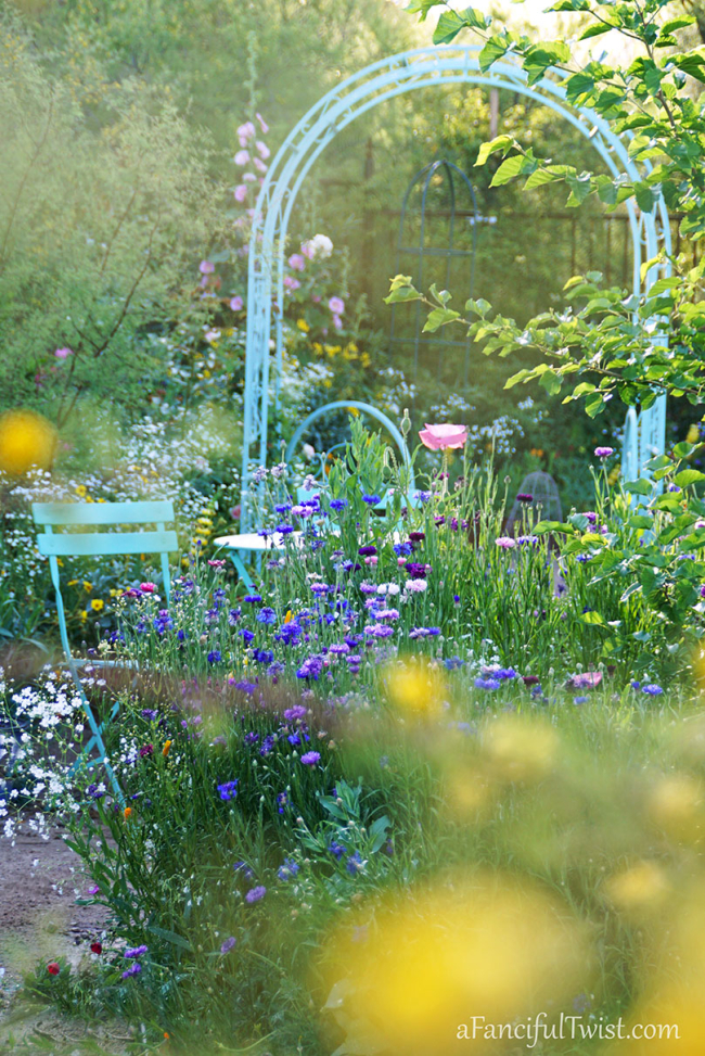 My Secret Quarantine Garden