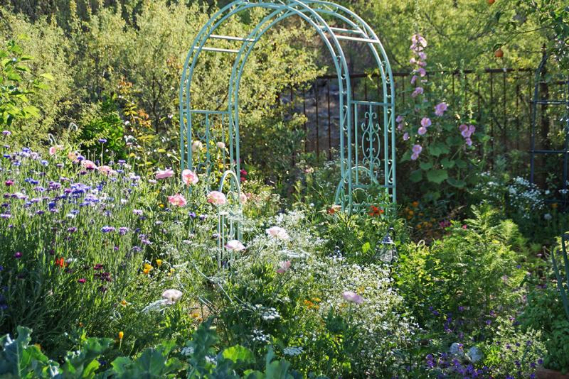 Secret garden 31